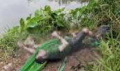 Thi thể người đàn ông nổi trên sông với nhiều vết chém, nghi bị sát hại