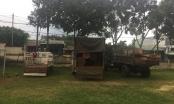 """Gia Lai: Bắt giữ nhiều xe vận chuyển gỗ lậu, lâm tặc """"bỏ xe"""" tẩu thoát"""