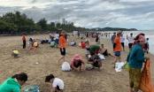 """Kỳ lạ: Hải sản ồ ạt """"đổ bộ"""" vào bãi biển, dân hồ hởi đi """"hái lộc"""""""
