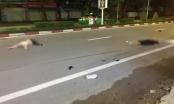 Xác định danh tính hai nữ sinh viên thương vong trong đoạn clip tai nạn kinh hoàng