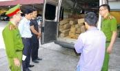 Hà Giang: 124 thanh gỗ Bách Xanh bất hợp pháp suýt bị tẩu tán