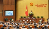 Kỳ họp thứ 8, Quốc hội khóa XIV - Thảo luận về kinh tế, xã hội, ngân sách nhà nước