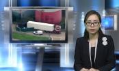 Bản tin Pháp luật: 39 thi thể người Việt trên xe đông lạnh - Câu chuyện đau lòng về tình trạng di cư bất hợp pháp