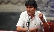 Ông Morales: 'Sẽ quay về Bolivia để khôi phục hòa bình'