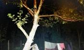 Tá hỏa phát hiện cô gái treo cổ trên cành cây tại Đắk Lắk
