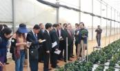 Hợp tác phát triển nông nghiệp giữa 3 nước Đông Dương
