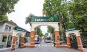 HABECO chấm dứt hợp đồng, hàng trăm thương binh nặng lao đao