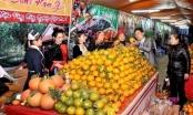 Tuyên Quang: Gấp rút chuẩn bị tổ chức Hội chợ cam sành huyện Hàm Yên năm 2020