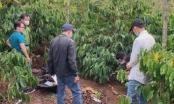 Đắk Lắk: Bắt được hung thủ sát hại cô gái trẻ ở rẫy cà phê
