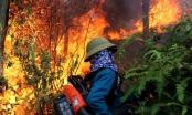 Tặng Huân chương dũng cảm cho người phụ nữ quên mình cứu rừng giữa biển lửa