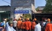 TP HCM: Cưỡng chế tổ hợp công trình Gia Trang quán - Tràm Chim Resort