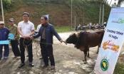 Món quà ý nghĩa từ Lớp K10 Quản lý Nhà nước về Báo chí 2019 đến với đồng bào vùng cao Nghệ An