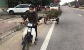 Người đàn ông hồn nhiên đánh cả xe kéo tự chế đi trộm cây cảnh trên quốc lộ
