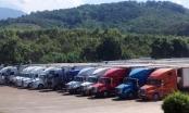 Container chở thanh long xếp hàng dài trước cửa khẩu ở Lào Cai