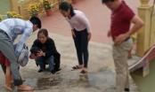 Thầy giáo kịp thời cứu sống một em nhỏ ngã xuống hồ nước khi đi du xuân