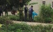 Ninh Bình: Phát hiện một thi thể đang phân hủy dưới gốc cây chuối