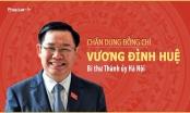 Infographics -  Chân dung tân Bí thư Thành ủy Hà Nội Vương Đình Huệ