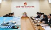 UBND tỉnh Quảng Ninh họp bàn phương án đón tàu biển quốc tế trước đại dịch Covid-19