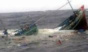 Tàu cá Nghệ An cùng 5 ngư dân bị chìm khi trên đường vào cảng