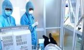 Cập nhật tình hình dịch bệnh Covid-19: Thông tin bất ngờ về bệnh nhân thứ 39, mới chỉ nghi nhiễm