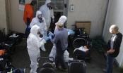Nước Mỹ trước nguy cơ bị tấn công ồ ạt bởi dịch bệnh Covid-19