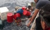 Nghệ An: Tàu cá bị đánh chìm, 6 thuyền viên ôm can nhựa lênh đênh trên biển suốt nhiều giờ