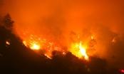 Lão nông bị phạt 90 triệu đồng vì đốt thực bì gây cháy rừng