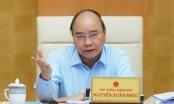 Thủ tướng phân tích lý do phải kiểm soát xuất khẩu gạo