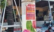 Cao Bằng: Xử phạt 40 triệu đồng đối với hành vi dán quảng cáo trên cột điện