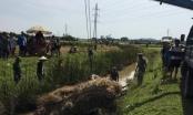 Nghệ An: Lật xe công nông chở lúa, người đàn ông bị đè tử vong