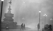 Giải mã vụ sát thủ sương mù khiến hàng ngàn người London mất mạng