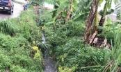 Bình Dương: Lại 1 bé trai 4 tuổi lọt xuống cống tử vong thương tâm
