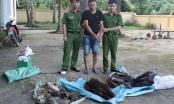 """""""Cắt rừng"""" vận chuyển động vật quý hiếm từ Lào về Việt Nam tiêu thụ"""