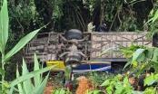Thêm 1 nạn nhân tử vong trong vụ tai nạn nghiêm trọng ở Kon Tum
