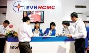 Ông Nguyễn Văn Thanh làm Tổng giám đốc EVNHCMC