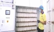 Công ty Hoàng Kim Minh đưa vào sử dụng hệ thống sấy khép kín sau phản ánh của bạn đọc Báo PLVN