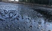 """Nghệ An: Địa phương báo cáo như thế nào về dòng nước thải đen ngòm """"bức tử"""" môi trường?"""