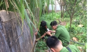 Hà Tĩnh: Phản đối quá khích trại lợn gây ô nhiễm, một đối tượng bị khởi tố