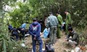 Nghệ An: Bắt giữ nghi phạm làm 2 người thương vong rồi lẩn trốn vào rừng