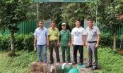 Lâm Đồng: Bàn giao động vật hoang dã cho Vườn Quốc gia Cát Tiên
