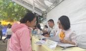 Sun Group tuyển dụng hàng trăm vị trí tại Ngày hội việc làm Phú Quốc