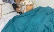 Hải Phòng: Một học sinh lớp 1 nguy kịch vì ăn nhầm thuốc diệt chuột