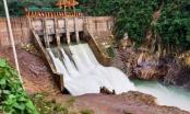 Thu hồi giấy phép hoạt động thủy điện Thượng Nhật