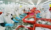 Hỗ trợ Doanh nghiệp tuân thủ quy định trong xuất khẩu thủy sản
