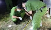 Bắc Giang: Nam thanh niên đâm chết tình địch giữa ban ngày