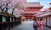 Du khách muốn mở lại các chuyến bay đến Nhật Bản để ngắm hoa anh đào sau dịch COVID-19