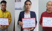 Quảng Ninh: Triệt xóa 3 tụ điểm có hành vi mua bán dâm