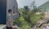 Tự ý phân lô đất nông nghiệp của người khác ở huyện Bình Chánh để lừa bán?