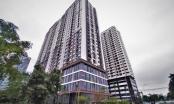 Bản tin Địa ốc Plus: Tòa nhà NO1-T1 Ngoại Giao Đoàn chưa được nghiệm thu, cư dân sống trong sợ hãi
