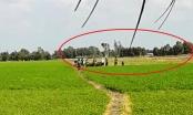 Bạc Liêu: Kháng nghị Giám đốc thẩm vụ tranh chấp đất kéo dài tại huyện Hồng Dân sau phản ánh của Phapluatplus.vn